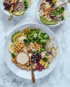 Probiotic Gut Healing Bowl